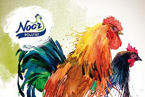 Нур Пиле - стенен календар